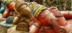 Szakmai látogatás Indiába