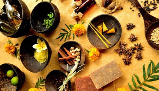 The Hungarian Ayurveda Medical Foundation introduces itself