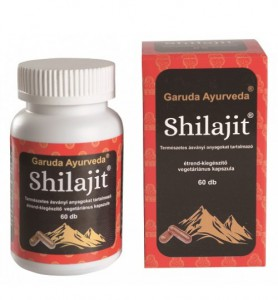 ga-shilajit-640x480-500x539
