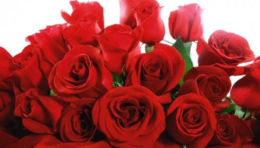 Dabur Piros Rózsavíz – különleges ajándék nőknek
