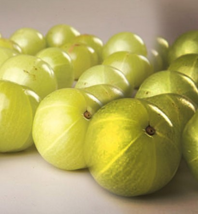 gooseberry-wallpaper-oebuxia-g5ok