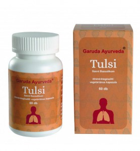 Tulsi-500x539
