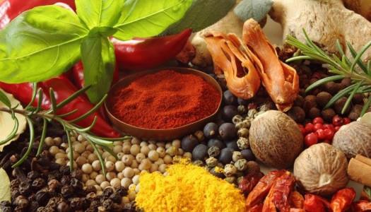 Gyógyító ízek, különleges gyógynövények – Alaptanfolyam