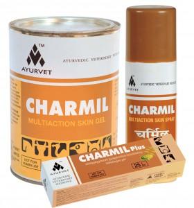 Charmil csoport copy