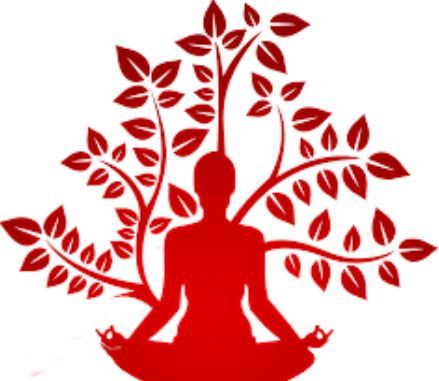 Yoga & Herbs
